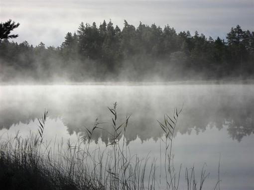 Mellantj�rn norr om Vansbro